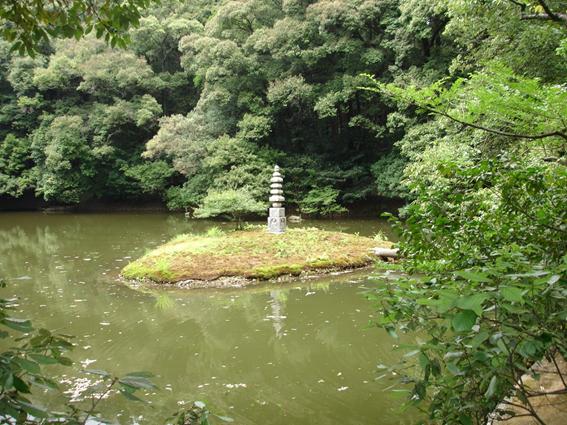 La imagen tiene un atributo ALT vacío; su nombre de archivo es image-9.png